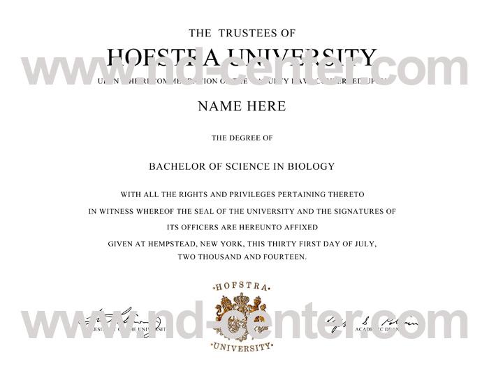 Hofstra University Diploma
