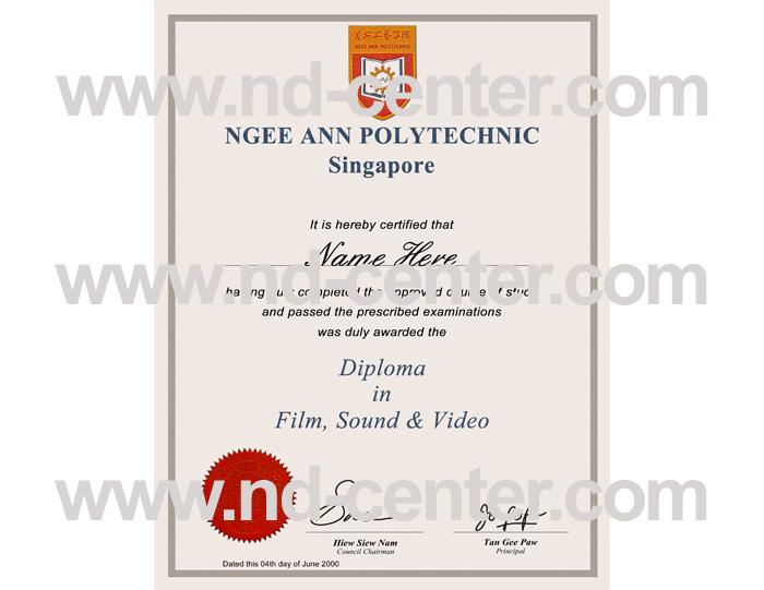 Ngee Ann Polytechnic Diploma