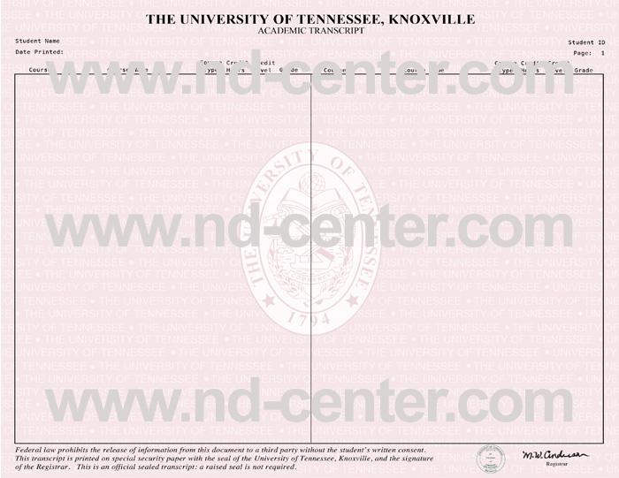 University Of Tennessee Transcript
